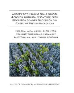 B430 (2019) A Review Of The Eliurus Tanala Complex