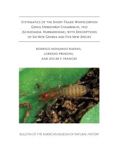 B435 (2019) Systematics Of The Short-Tailed Whipscorpion