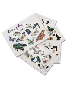 Butterflies Box of 20 Notecards