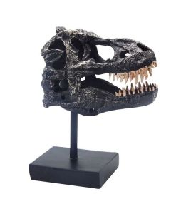 Black Resin T. rex Skull Model