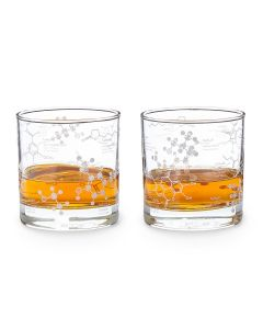 Set of Two Whiskey Chemistry Glasses