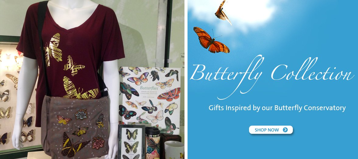 Shop the Butterfly Collection