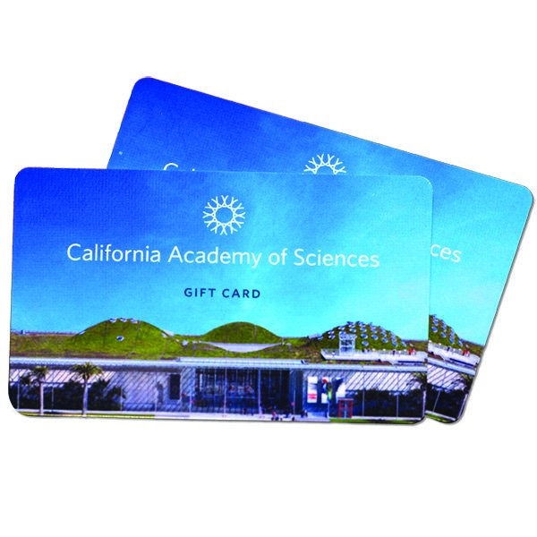 Academy Gift Cards