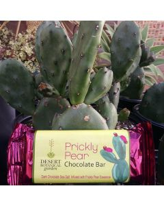 Dark Chocolate Prickly Pear Bar