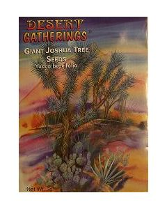Joshua Tree Cactus Seeds