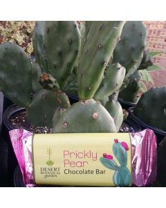 Milk Chocolate Prickly Pear Bar