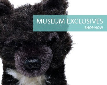 Shop Museum Exclusives